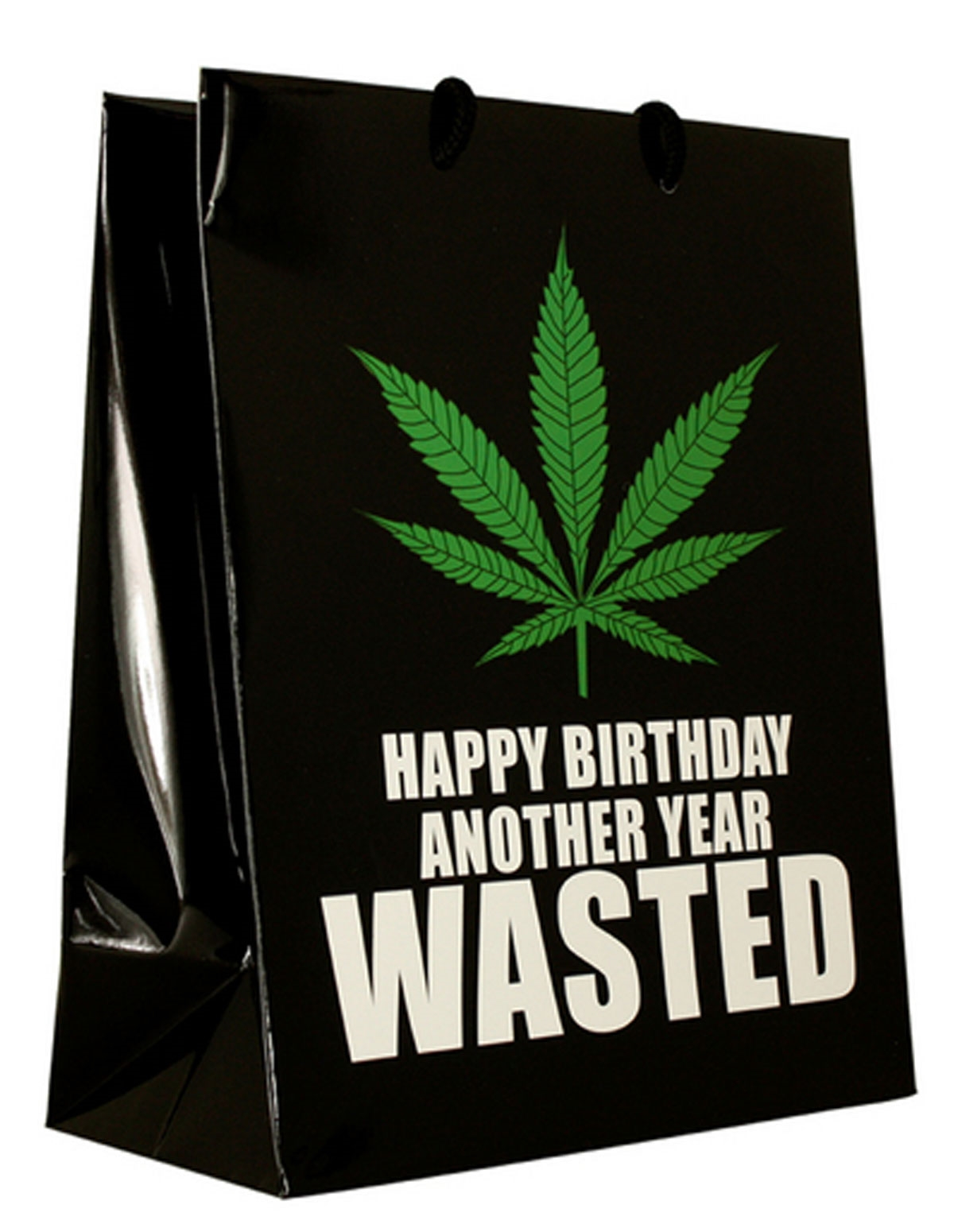 Another Year Wasted Gift Bag
