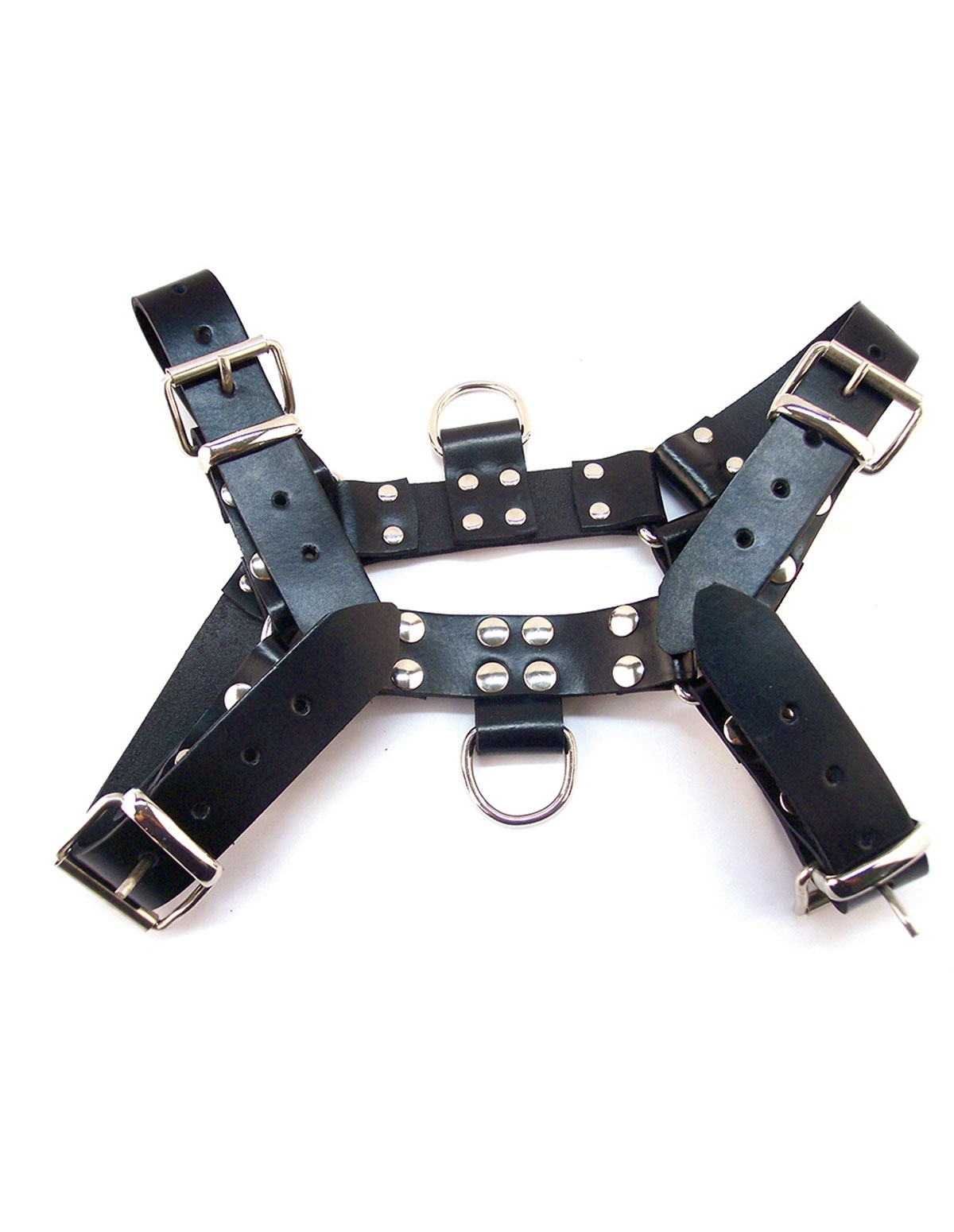 Rouge Buckle O.T.H. Harness