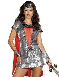 SHIMMERING KNIGHT COSTUME
